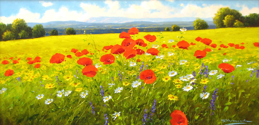 135 - G Nesvadba - 24 x 48 Poppies and Wild Flowers 3795