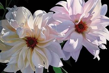 BRIAN DAVIS ARTIST Delightful Dahlias by Artist Brian Davis