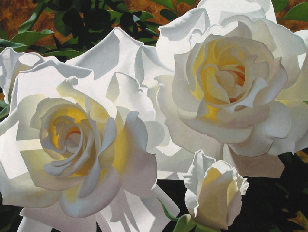 BRIAN DAVIS ARTIST White Radiant Roses by Artist Brian Davis